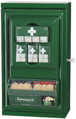 Small First Aid Cabinet Cederroth