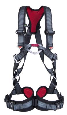 Harness Cresto 1118